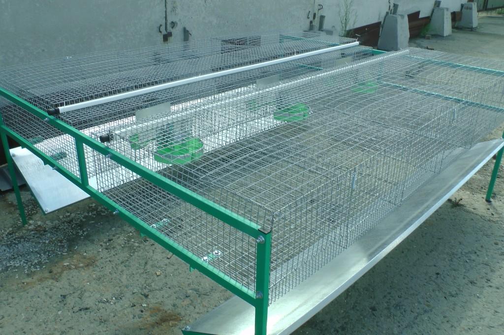 772434fd750f Купить онлайн клетки кроликам КО1 - Большой фермер для кролиководства.
